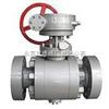 Q347F/H-64C-DN250蜗轮球阀